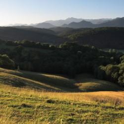 La forêt de Mourle et le Pic du Midi - Montaut · © stockli