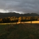Illumination soleil levant - Mifaget · © stockli