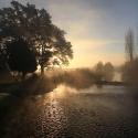 Roimance matinale du Lagoin