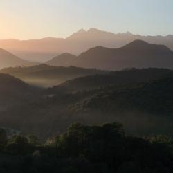 Lignes noires de la forêt de Mourle - Montaut· © stockli