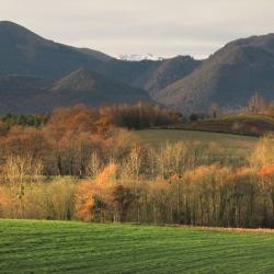 Coteaux de l'Arrieusoulens - Asson · © stockli