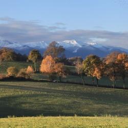 Splendeur de l'hiver béarnais - Lys · © stockli
