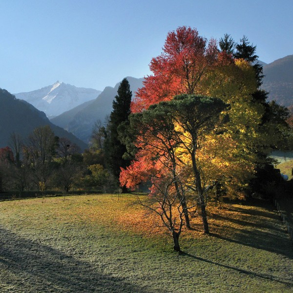 Magnificence d'automne - Arhtez d'Asson · © stockli