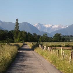 Chemin des Arribets - Bénéjacq · © stockli